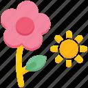 agriculture, farming, flower, garden, sun, weather
