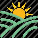 agriculture, farm, farming, field, gardening, sun