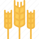 agriculture, farm, farmer, garden, wheat icon