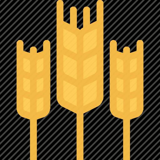 agriculture, farm, farmer, garden, wheat icon