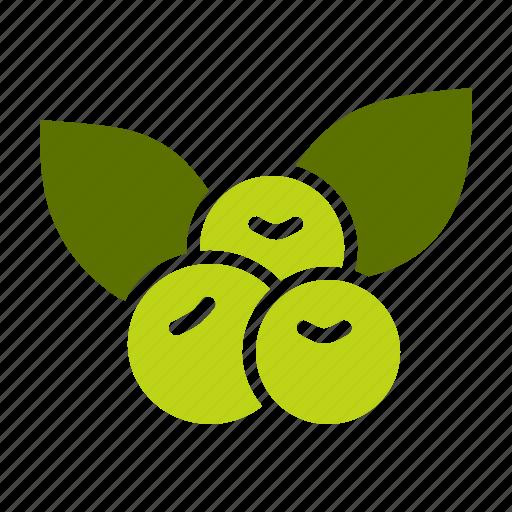 berries, berry, cherries, cherry, fruit, healthy, tropical icon