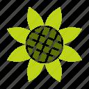 bloom, blossom, flower, garden, gardening, spring, sunflower