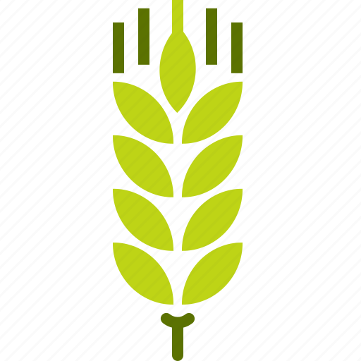agriculture, crop, cultivate, gluten, grain, harvest, wheat icon