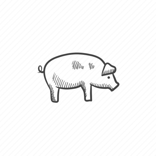 bacon, boar, ham, pig, piglet, pork, swine icon