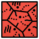 alveoli, cells, particle, walls icon