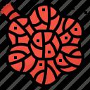 blood, disease, heart, ischium icon