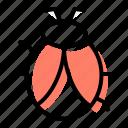 allergen, bug, insect, dust mite