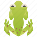 amphibian, emerald, forest, frog, glass icon