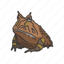 animal, frog, horned frog, invertebrate, toad, vertebrates icon