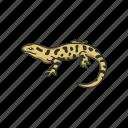 amphibian, animal, lizard, mole salamander, salamander, tiger salamander icon