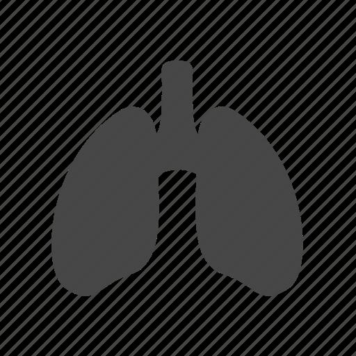 anatomy, health, human, lungs icon
