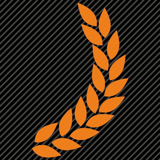 branch, laurel, right icon