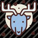 christmas, elk, snow, winter icon
