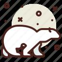 bear, polar, snow, winter icon