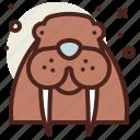 body, snow, walrus, winter icon