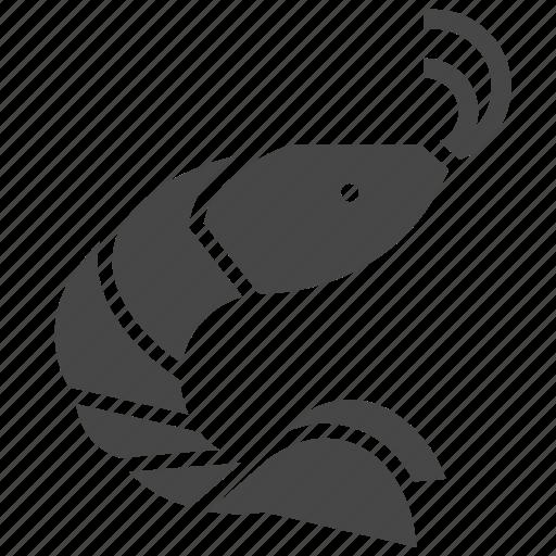Animal, ocean, sea, shrimp icon - Download on Iconfinder