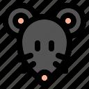 animal, wild, zoo, nature, animals, jungle, rat