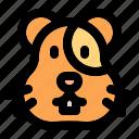 animal, wild, zoo, nature, animals, jungle, hamster