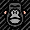 animal, wild, zoo, nature, animals, jungle, gorilla