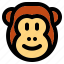 animal, wild, zoo, nature, animals, jungle, monkey