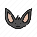 animal, bat, face, mammals, night, vampire icon