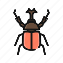 animal, beetle, bug, insect, nature, pest icon