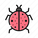 animal, bug, insect, ladybug, pest icon