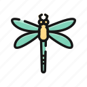 animal, bug, dragonfly, fly, insect, spring icon