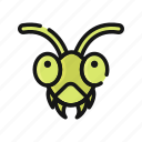 animal, bug, grasshopper, insect, nature, pest icon