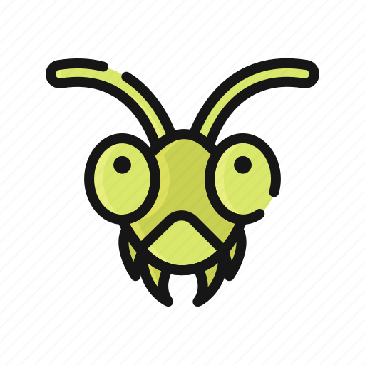 Animal, bug, grasshopper, insect, nature, pest icon - Download on Iconfinder