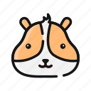 animal, cute, hamster, mammals, mouse, pet icon