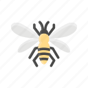 animal, bee, bug, hive, insect icon