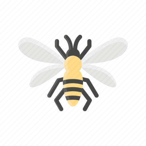 Animal, bee, bug, hive, insect icon - Download on Iconfinder