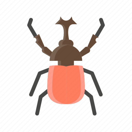 Animal, beetle, bug, insect, nature, pest icon - Download on Iconfinder