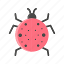 animal, bug, ladybug, pest icon