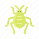 animal, bug, cricket, insect, natural, pest icon