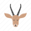 animal, deer, elk, mammals, reindeer, rudolph, wild icon