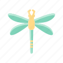 animal, dragonfly, bug, insect, spring, fly