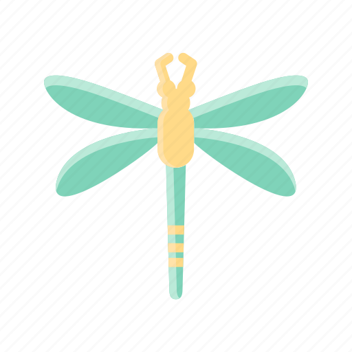 Animal, bug, dragonfly, fly, insect, spring icon - Download on Iconfinder