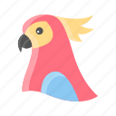 animal, bird, cute, parrot icon