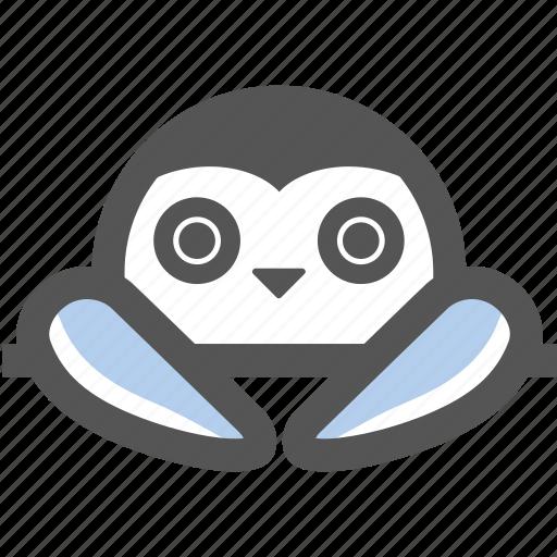 antarctic, bird, cute, nature, penguin, snow, winter icon