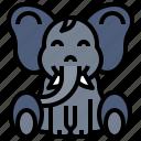 animal, elephant, kingdom, life, wild, zoo