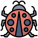 animal, kingdom, ladybug, life, wild, zoo icon