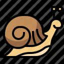 animal, kingdom, life, snail, wild, zoo