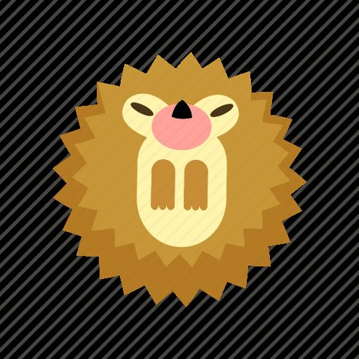animal, hedgehog, mammal, spike, wild icon