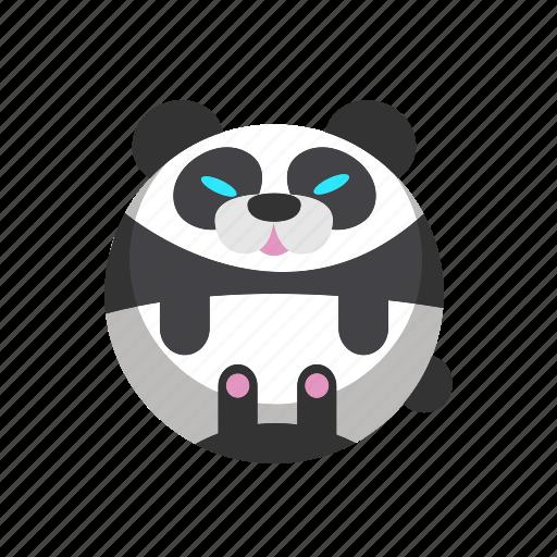 animal, bear, mammal, panda, zoo icon