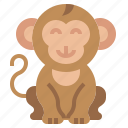 animal, kingdom, life, monkey, wild, zoo