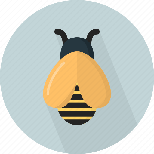 animal, bee, fly icon
