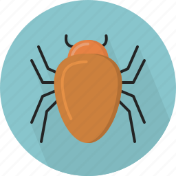 animal, bug icon