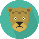 animal, cheetah, jungle, safari, zoo icon